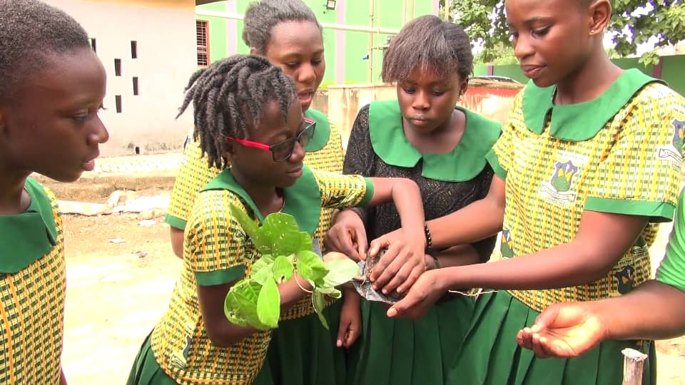 One woman in Kumasi is striving for a greener Ghana